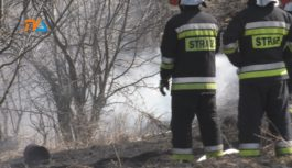 Strażacy łapią się za głowę- płoną łąki